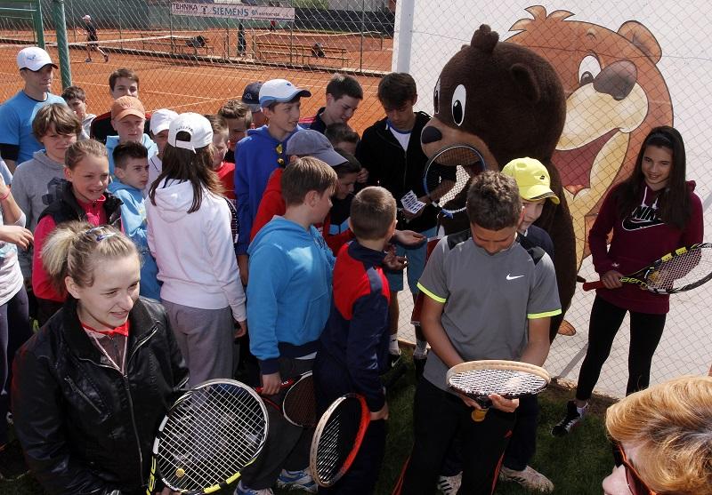 Lino tenis 2014